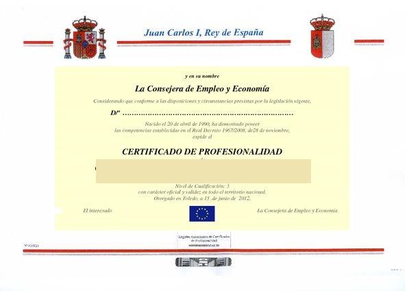 certificado de profesionali